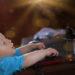 Ребёнок и гаджеты поощрять или запрещать